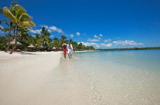 Constance Le Prince Maurice: Beach View