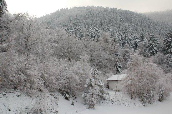 Logis Domaine Langmatt : Vue enneigée  (sud)