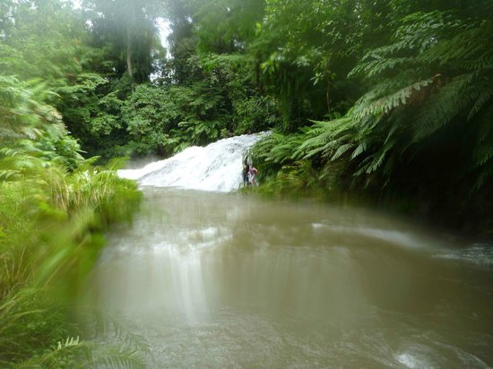 Barrier Beach Resort:                   Hope Waterfall Tour