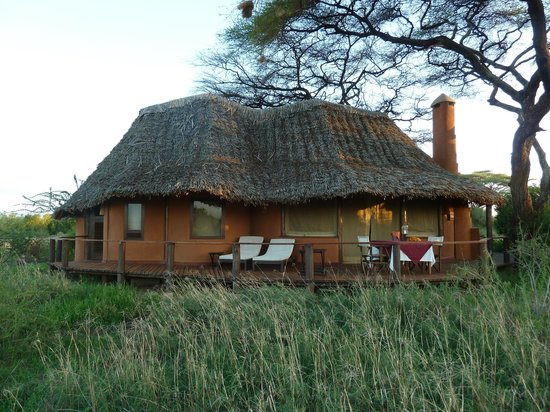 Tawi Lodge:                   Our cottage no 4