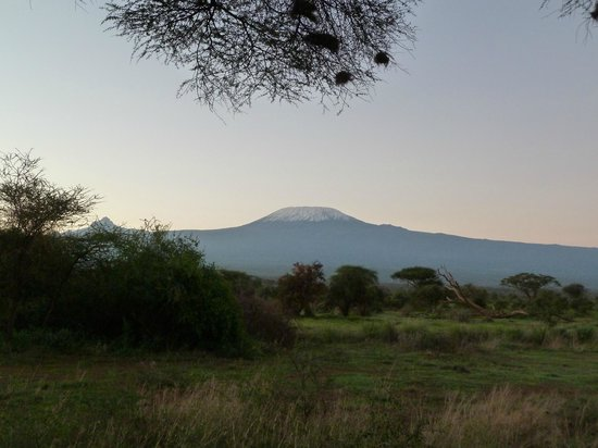 Tawi Lodge:                   Morning view of Kili from our cottage