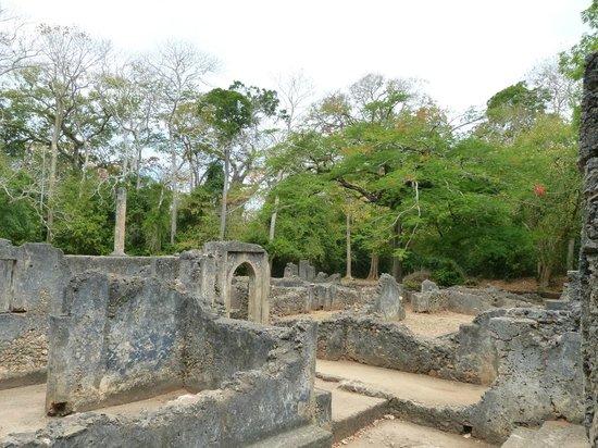 Swahili House:                                     Rovine di Gede