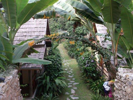 มายดรีม บูติค รีสอร์ท:                   The hotel gardens.