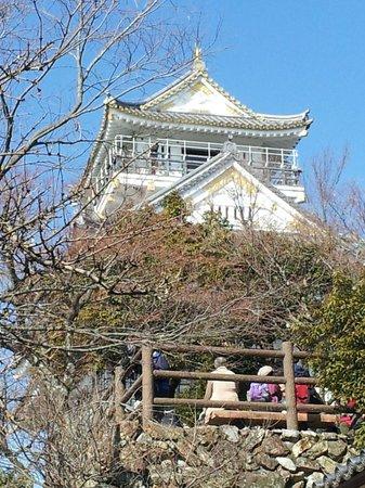 Gifu, Japón: 岐阜城です!