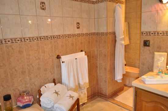 La Bergerie de l'Aqueduc : salle de bain Tristan et Iseult