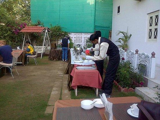 The Kothi Heritage:                   Breakfast in the garden