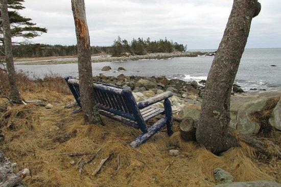 懷特波因特海灘渡假村照片