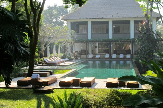 Uma by COMO, Ubud:                   Pooldide morning view