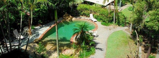 Toowong Villas: Pool