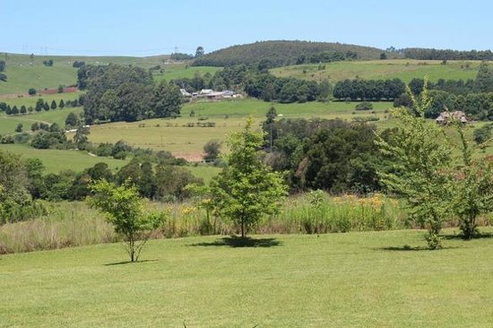 Lions River Country Cottages:                                     View from Protea Cottage
