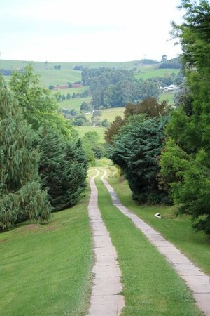 Lions River Country Cottages:                                     Road leading down from cottages