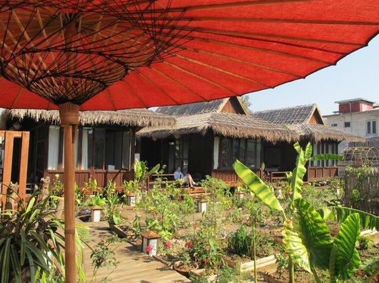 La Maison Birmane:                   view from breakfast area