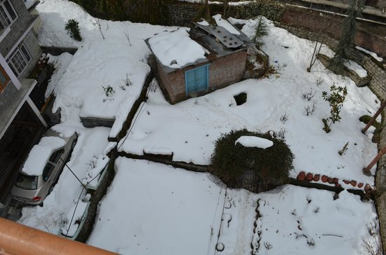 Silmog Garden:                   Back Yard