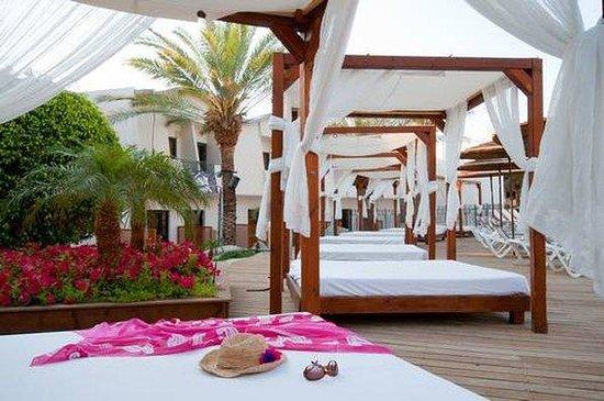 Leonardo Privilege Hotel Eilat : PREZula In Pool
