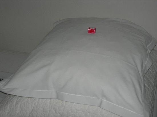 Bruges By Night Bed & Breakfast:                   Chocolat sur l'oreiller