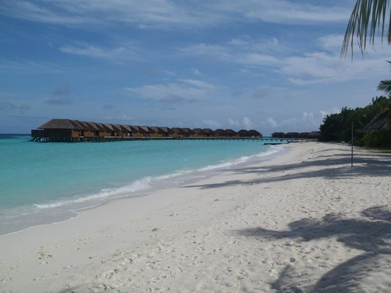 Veligandu Island Resort & Spa:                   Strand