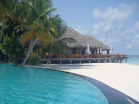 Veligandu Island Resort & Spa:                   Restaurant