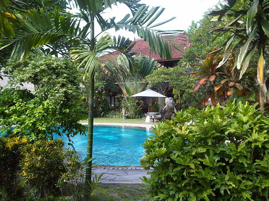 Puri Dalem Hotel:                   the pool