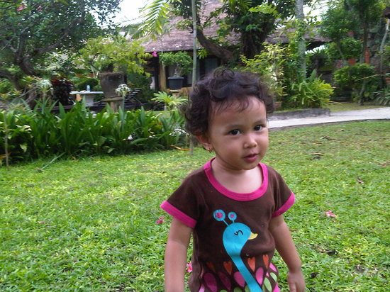 Puri Dalem Hotel:                   lovely garden