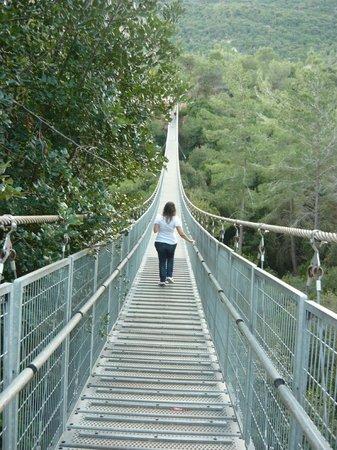 Hanging Bridge at Nesher Park:                   Suspension Bridge