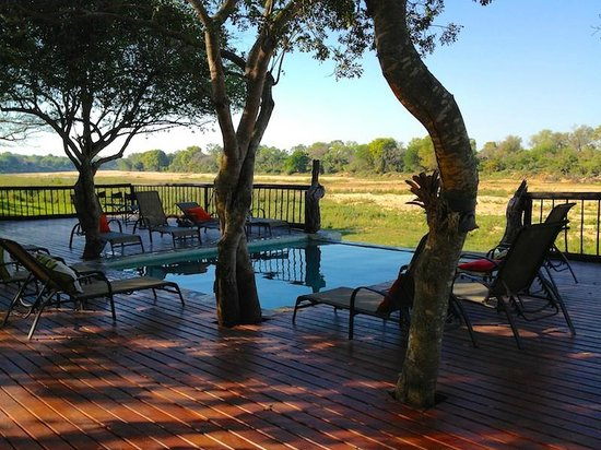 Umkumbe Safari Lodge:                   Bush TV