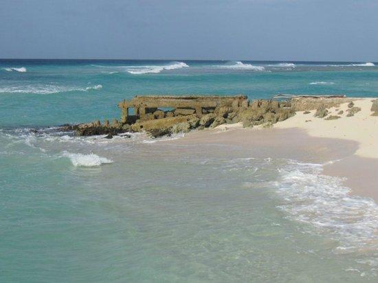 Rostrevor Hotel: Beach Area
