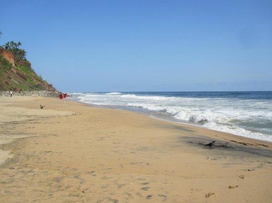 The Gateway Hotel Janardhanapuram Varkala :                   Beach a few mins from hotel