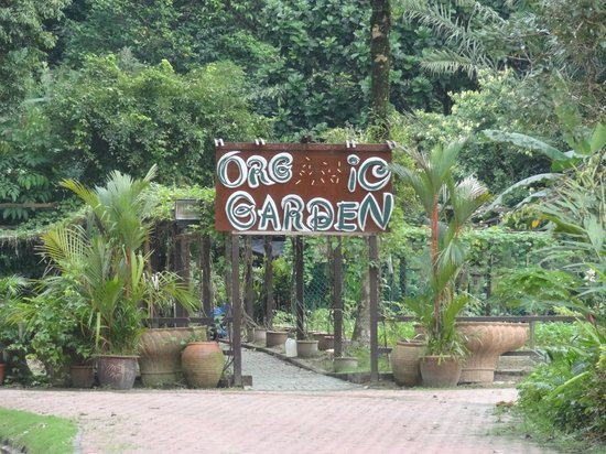 Palace of the Golden Horses: Organic Garden