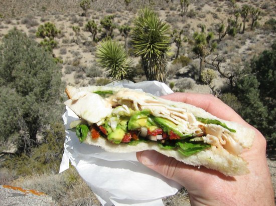 Great Basin Bakery :                                     Mt. Tom turkey sandwich!