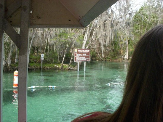 Crystal Lodge Dive Center: Three Sister Springs