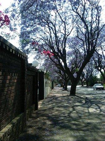 Margaret's Place:                   Nottingham road