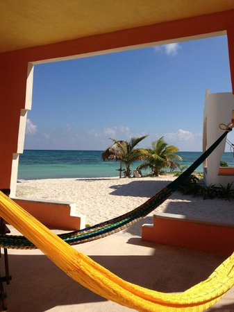 Mayan Beach Garden:                   View from the porch of our cabana