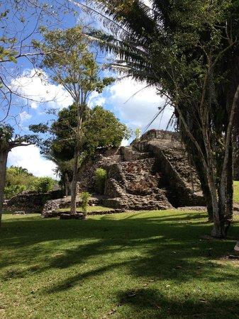 Mayan Beach Garden:                   Kohunlich ruins (in the jungle)