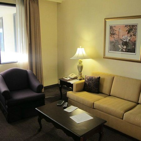 The Cook Hotel and Conference Center at LSU : Sitting-room, suite