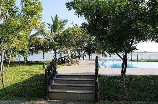 Wila Safari Hotel:                   Pool and garden