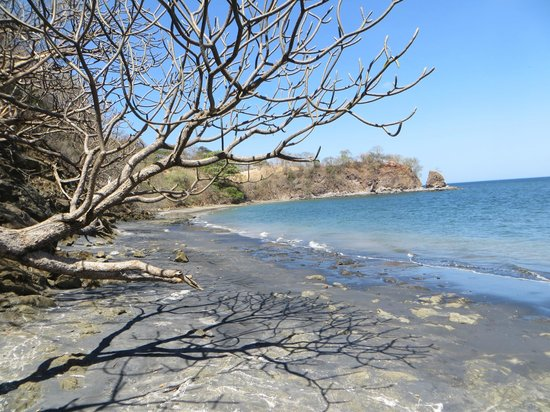 Paradise Flamingo Beach:                   Private beach with black sand