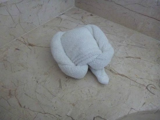Tanik Condominiums:                   Turtle!