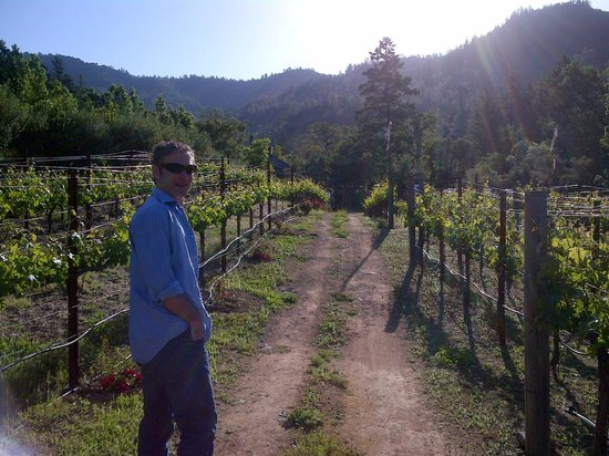 Calistoga Ranch, An Auberge Resort:                                     Walking in the Calistoga vineyard