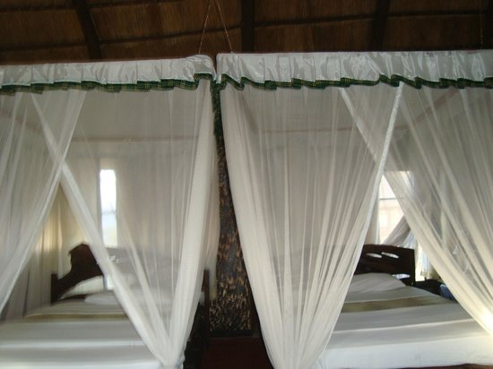 Lake Manyara Wildlife Safari Camp