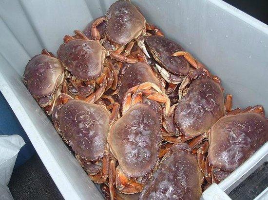 写真Fish Alaska Charters枚