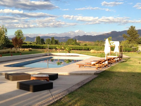 Entre Cielos:                   Pool and vineyard