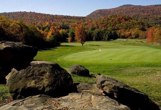 Highland House Condos: Golf