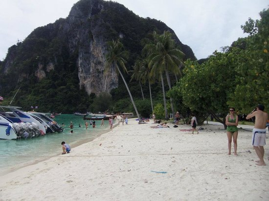 Gembira Tour Phuket-Day Tours: Tonsai Bay, Phi Phi island