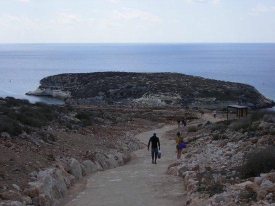Isola dei Conigli:                   la discesa che porta alla baia (la salita è più faticosa)