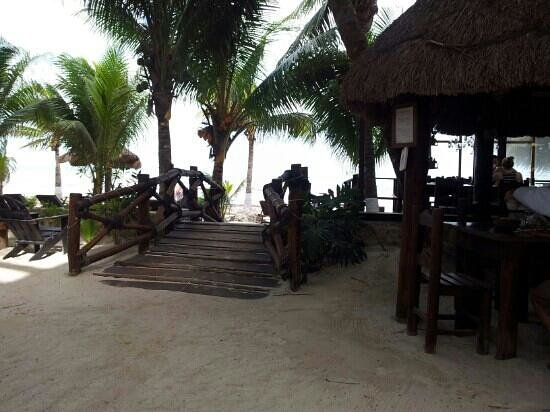 Beachfront La Palapa Hotel Adult Oriented: restaurant and bar on decking on the beach