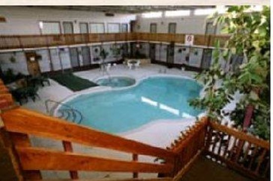 Imperial Motor Inn: Indoor Pool