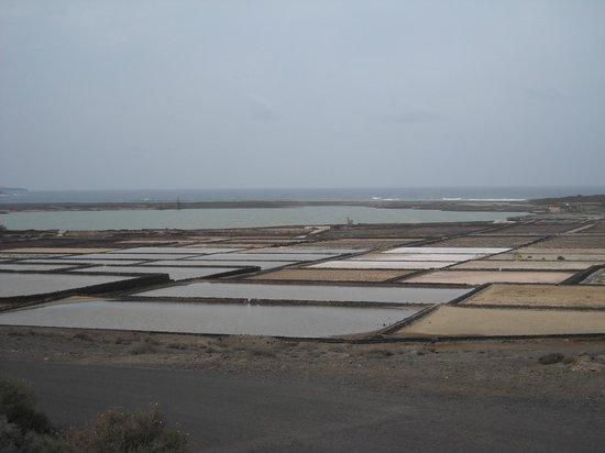 Salinas de Janubio:                   Salinas del Janubio