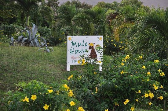 Mule House :                   The sign from the main road