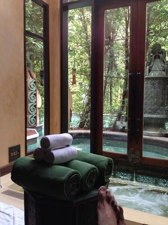 The Baray Villa:                   pool in de room