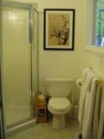 Inn the Woods Bed and Breakfast: Cliffside bathroom